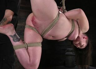 Hogtied xvideos